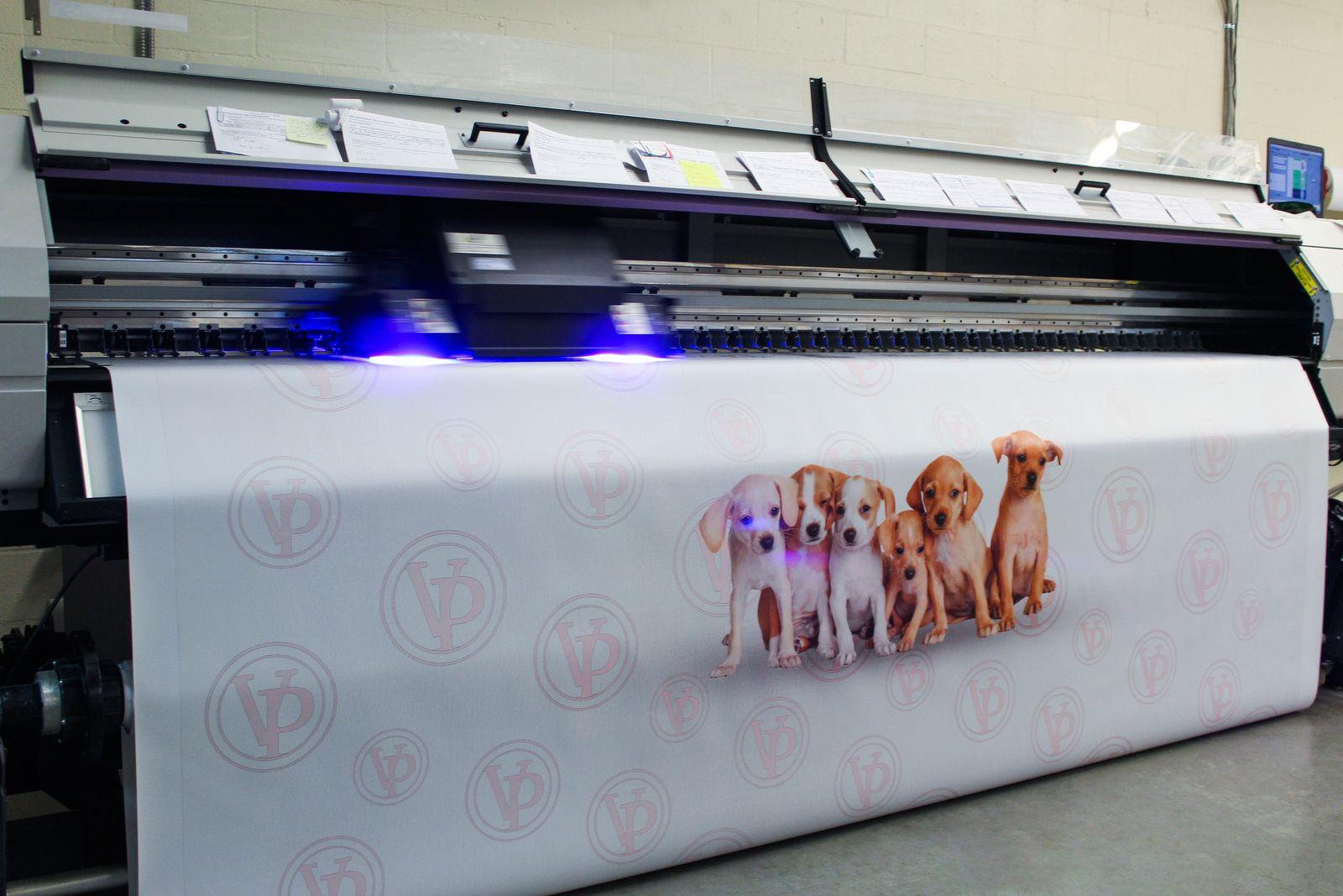 Բանների վրա շների պատկերով տպագրություն